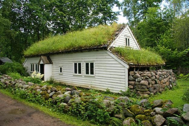 Skandinavska hiša z zeleno streho