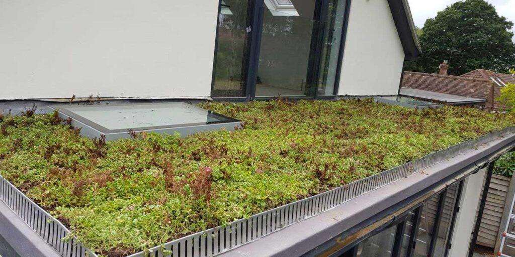 Zelena streha na delu družinske hiše